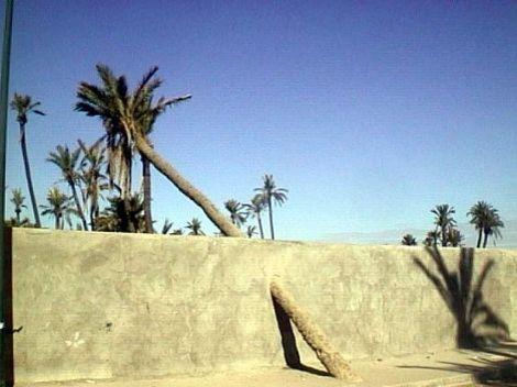 Image du Blog mescoupsdecoeur.centerblog.net